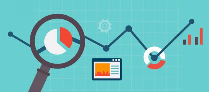 Top SEO Insights From Leading Organisations